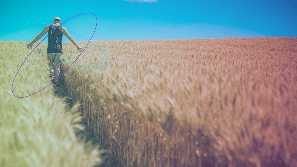 Pľnohospodárstvo a internet vecí, sieť Sigfox uľahčuje zber dát a získavanie údajov